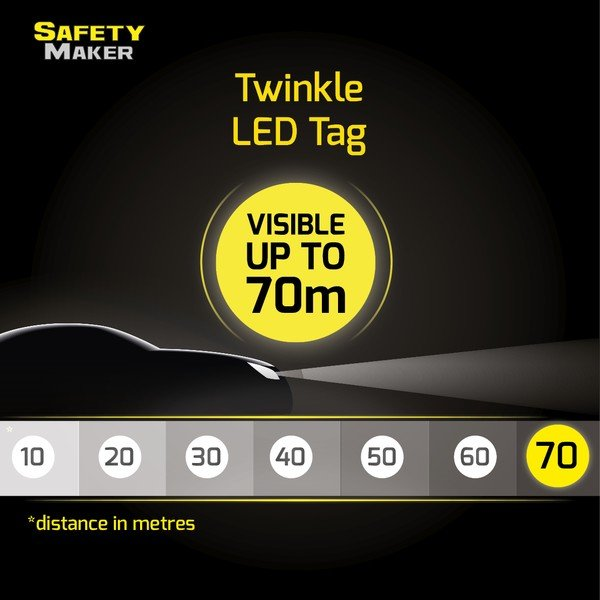 Twinkle LED Pendant red